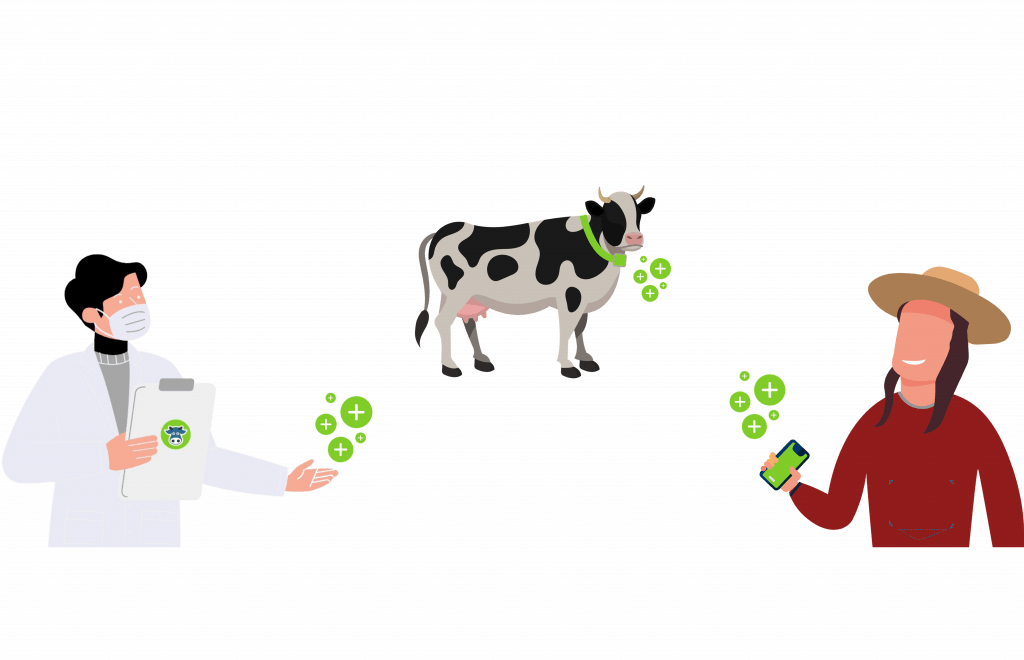 agritech, vaches laitières, agriculteur, vétérinaire
